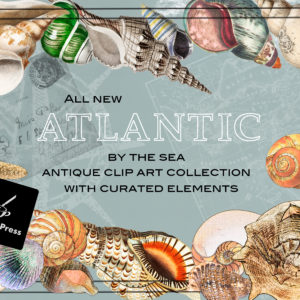 Atlantic By The Sea Collection