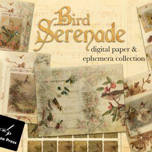 BirdSerenadeCoverEtsy