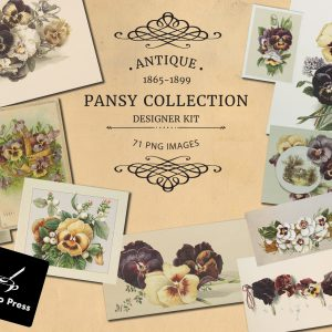 PansyCollectionCoverEtsy
