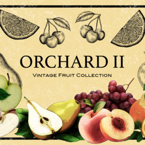 Orchard II Vintage Fruit Design Collection